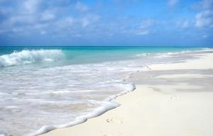 beach-652119_640